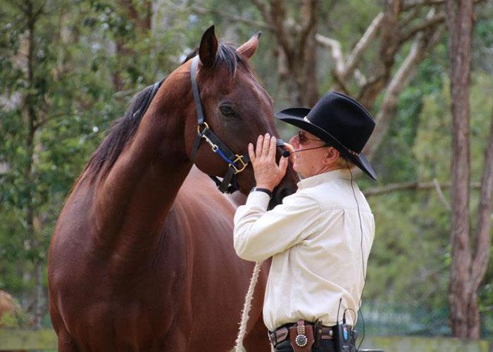 John Chatterton Horse Trainer