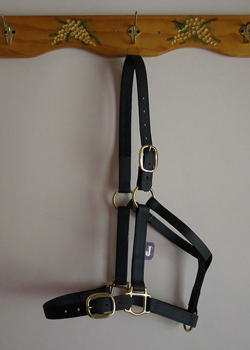 Easy Loader Halter