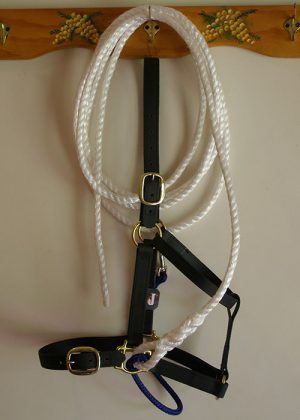 Halter with lead and strap
